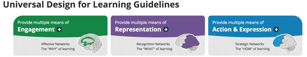 graphic for 3 areas of UDL framework